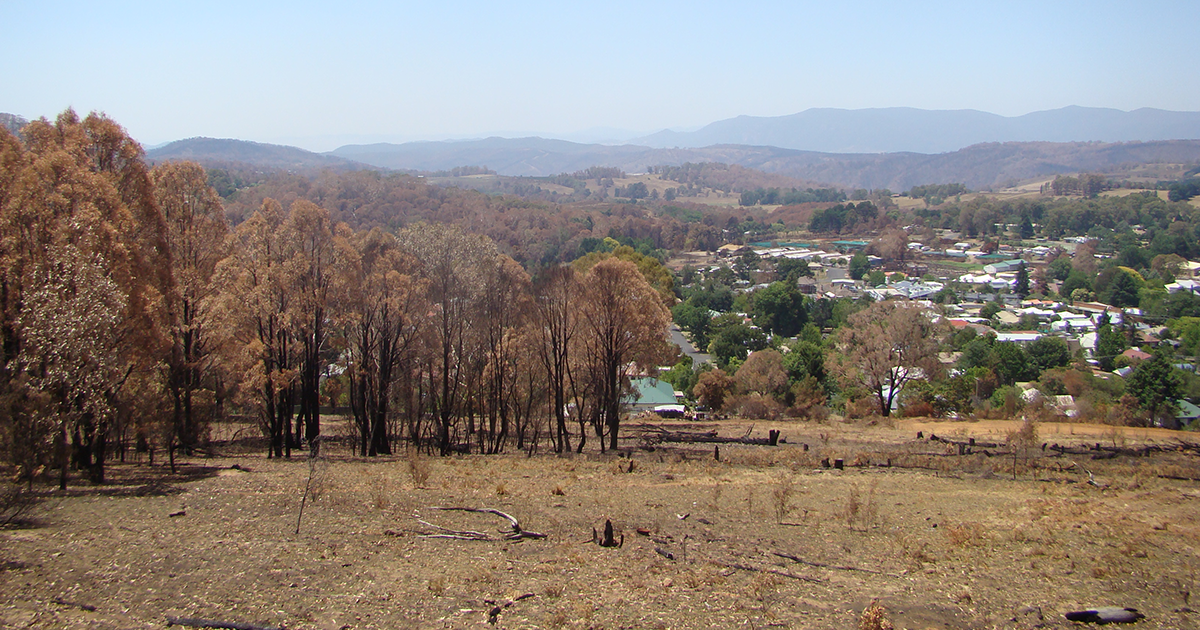 A helping hand to rebuild after Batlow's devastating bushfires